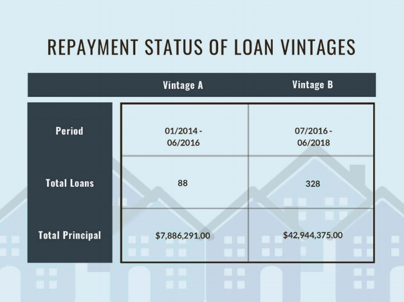 Repayment+Status+of+Loan+Vintages
